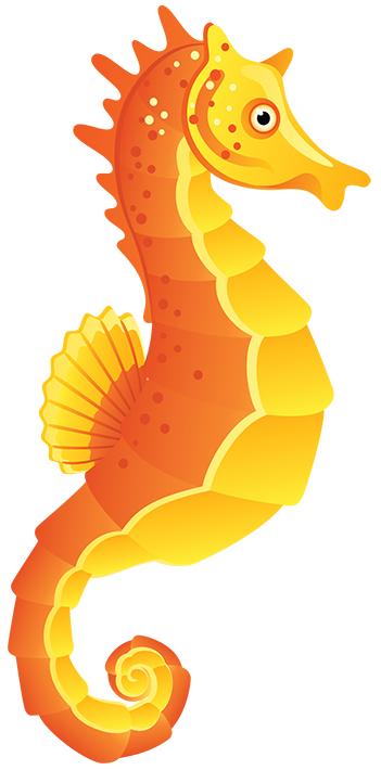 Seahorse (colour)