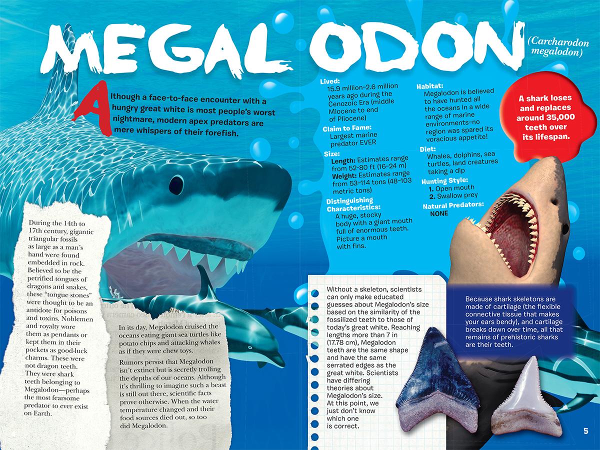 Scholastic Canada | Shark Attack!