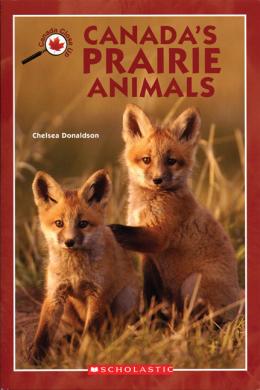 Canada Close Up: Canada's Prairie Animals