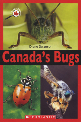 Canada Close Up: Canada's Bugs