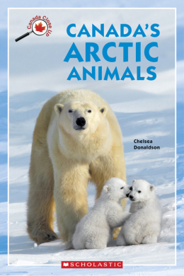 Canada Close Up: Canada's Arctic Animals