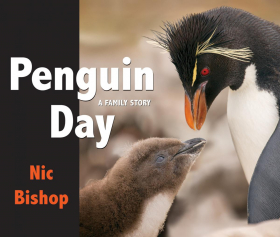 Penguin Day