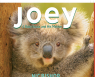 Joey: A Baby Koala and His Mother