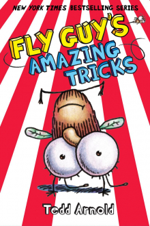 Fly Guy #14: Fly Guy's Amazing Tricks