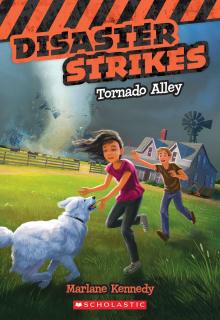 Disaster Strikes #2: Tornado Alley