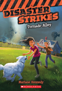 Disaster Strikes #2: Tornado Alley