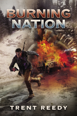 Divided We Fall Trilogy: Book 2: Burning Nation