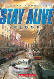 Stay Alive #4: Flood