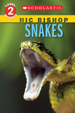 Scholastic Reader, Level 2: Nic Bishop: Snakes