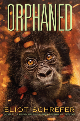 Ape Quartet #4: Orphaned