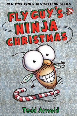 Fly Guy #16: Fly Guy's Ninja Christmas