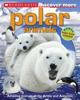 Scholastic Discover More: Polar Animals (Confident Readers)