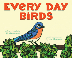 Every Day Birds