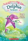 Dolphin School #2: Echo's Lucky Charm