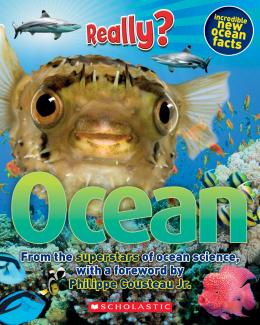 Really? Ocean