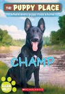 The Puppy Place #43: Champ