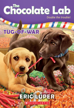 The Chocolate Lab #2: Tug-of-War