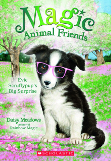 Magic Animal Friends #10: Evie Scruffypup's Surprise
