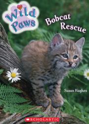 Wild Paws: Bobcat Rescue