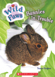 Wild Paws: Bunnies in Trouble