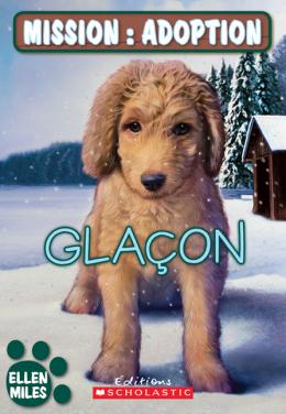 Mission : adoption : Glaçon