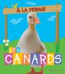 À la ferme : Les canards
