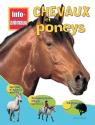 Info-animaux : Chevaux et poneys