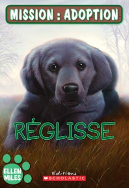 Mission : adoption : Réglisse