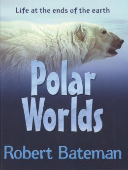 Polar Worlds