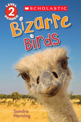 Scholastic Reader, Level 2: Bizarre Birds
