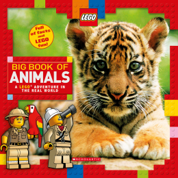 Big Book of Animals: LEGO® Nonfiction