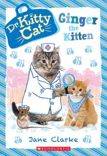Dr. Kittycat #9: Ginger the Kitten