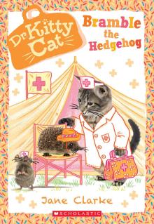 Dr. Kittycat #10: Bramble the Hedgehog