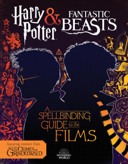 A Spellbinding Guide to the Films of the Wizarding World (Fantastic Beasts: The Crimes of Grindelwald)