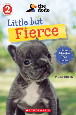 Little But Fierce (The Dodo: Scholastic Reader, Level 2)