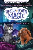 Night Owl (Upside-Down Magic #8)