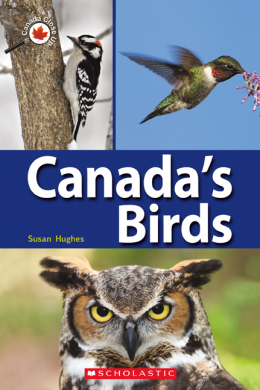 Canada Close Up: Canada's Birds