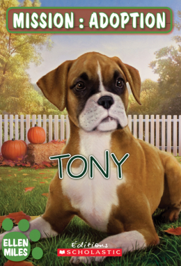 Mission : adoption : Tony