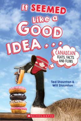 It Seemed Like A Good Idea book cover