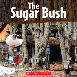 The Sugar Bush