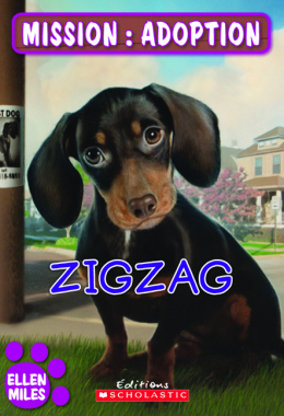 Mission : adoption : Zigzag