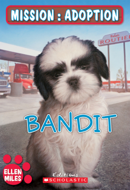 Mission : adoption : Bandit