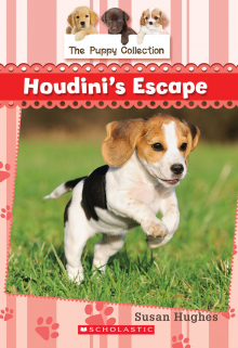 Book 7: Houdini's Escape