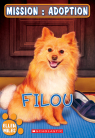 Mission : adoption : Filou