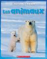 L' hiver au Canada : Les animaux