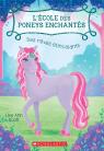 L' école des poneys enchantés : N° 4 - Des rêves étincelants