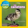 National Geographic Kids : J'explore le monde : Les canetons