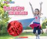 Le corps humain : Mon système circulatoire
